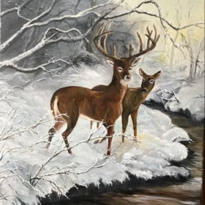 Cervides sous la neige