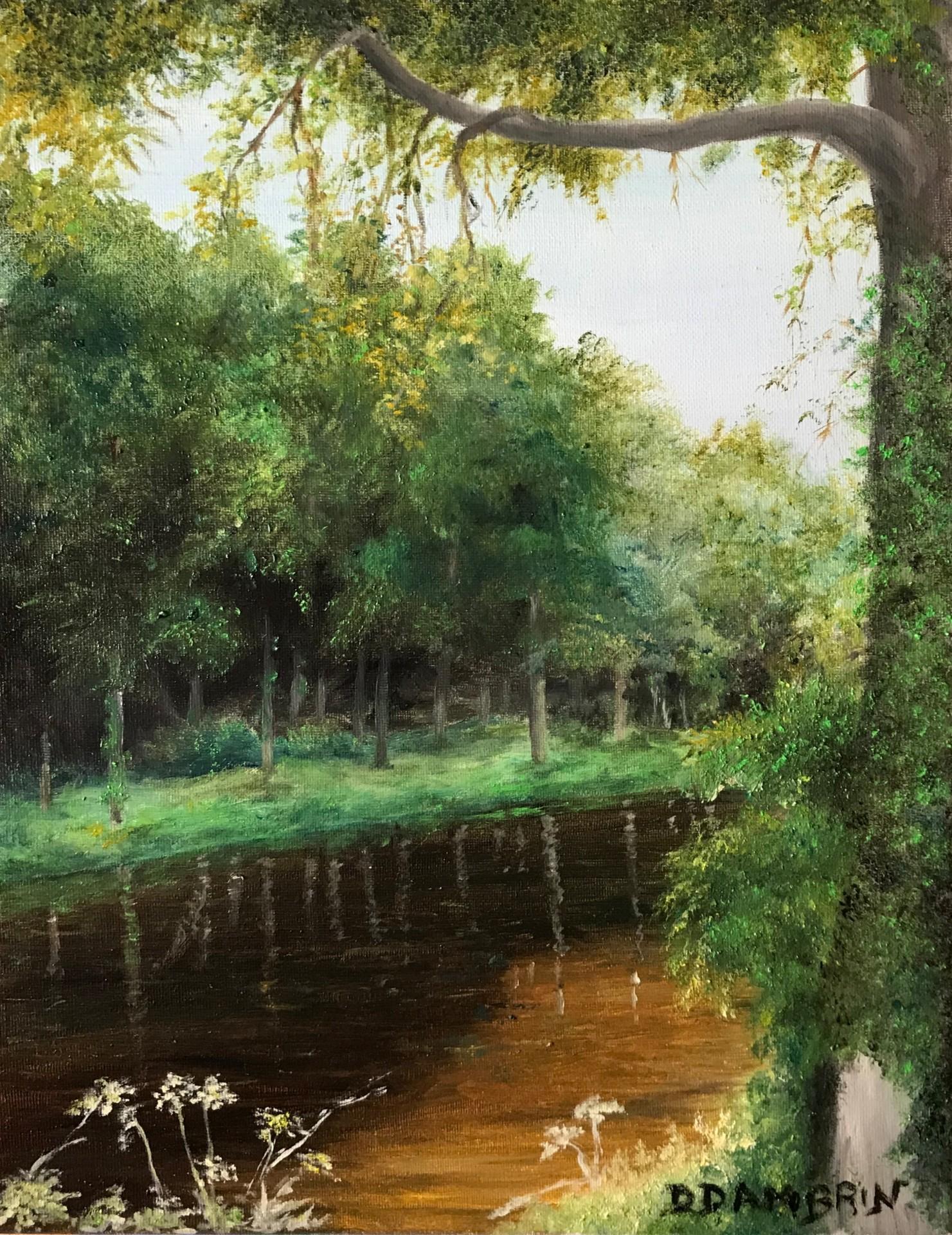 Rivière boueuse