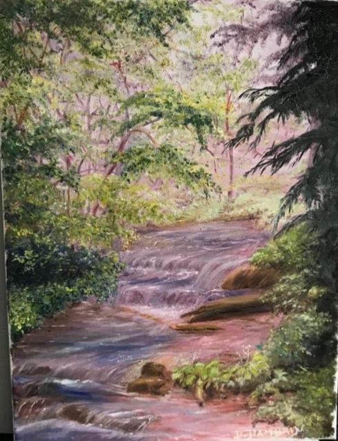 Rivière cascade