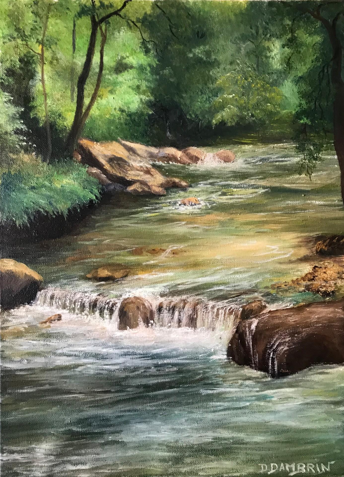 Rivière sous bois