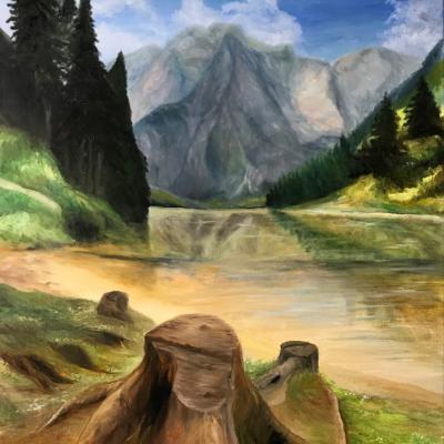 Souche au bord du lac