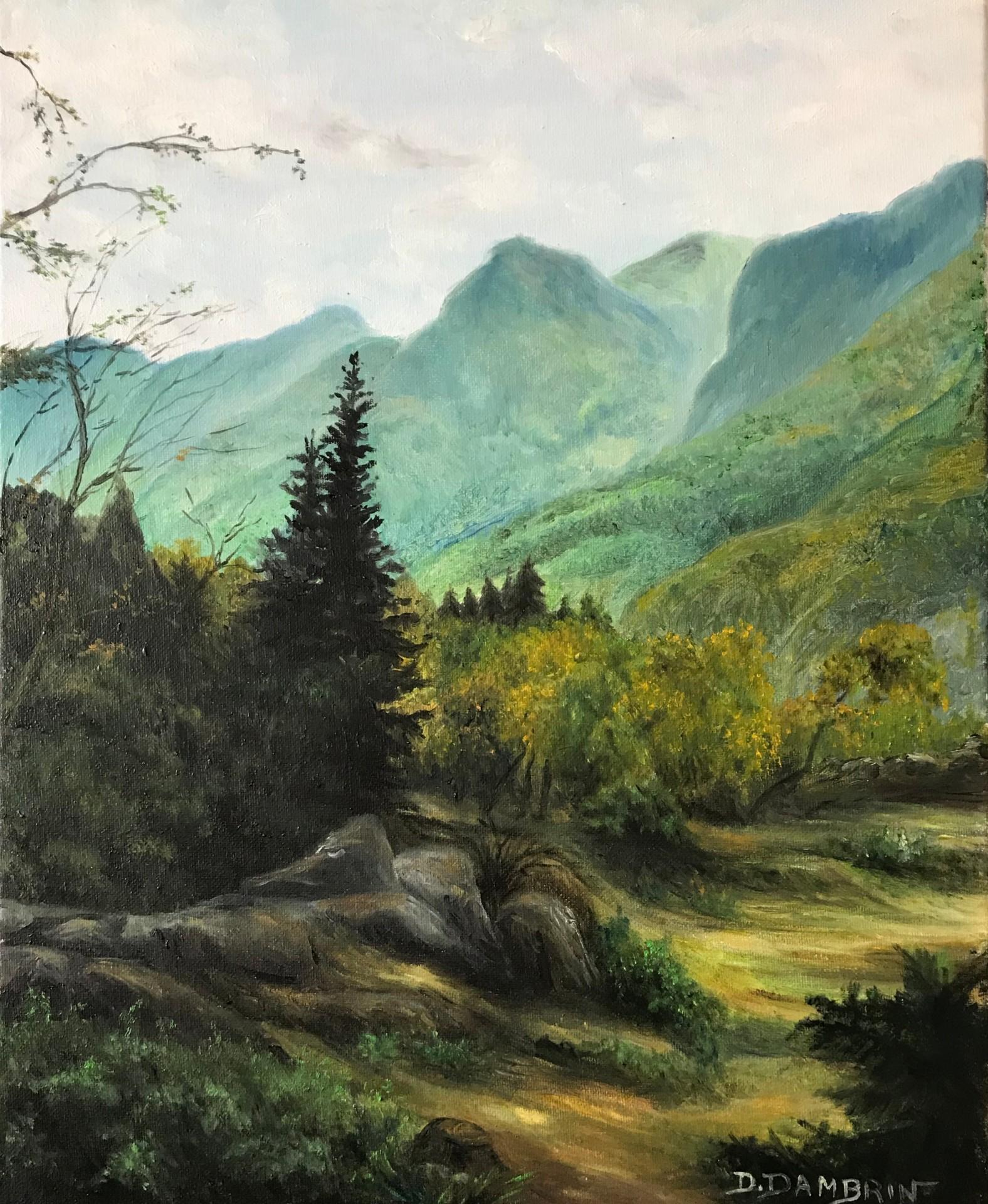 Vue sur montagne au crépuscule